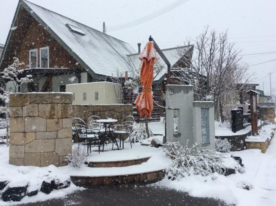 雪のプレオ郡山店②
