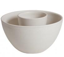 ビオトープメダカ鉢
