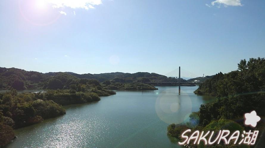 SAKURA湖