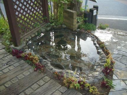 プレオの池
