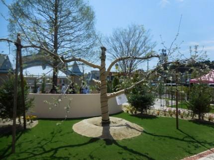 二本松から移植されたりんごの樹