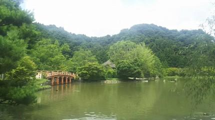 白水阿弥陀堂庭園