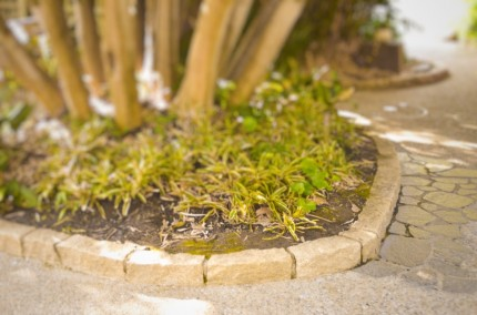 ピンコロ平積み花壇