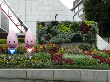 東京タワー植栽