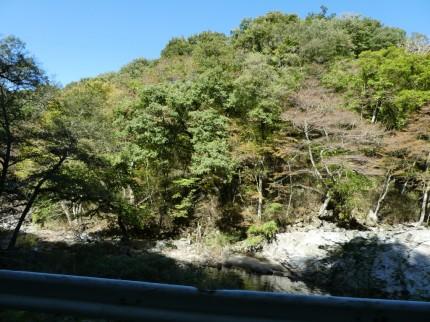 鹿又川渓谷