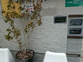 プレオ福島店エバーアートボード