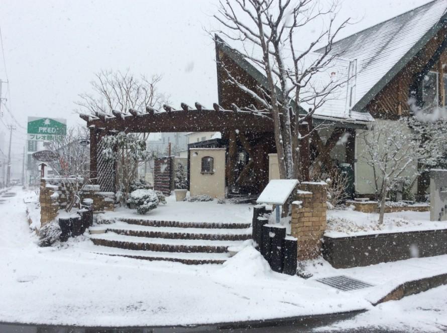 雪のプレオ郡山店①