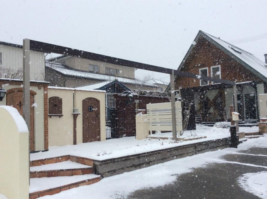 雪のプレオ郡山店③