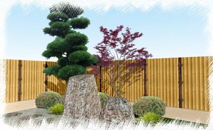 イロハモミジ 植栽